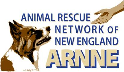 Logo for Animal Rescue Network of New England, name in blue font and image of dog