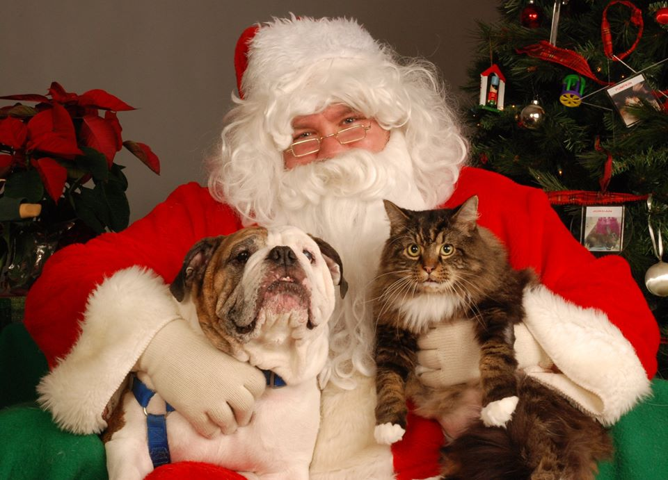 Image of Santa with a dog and a cat