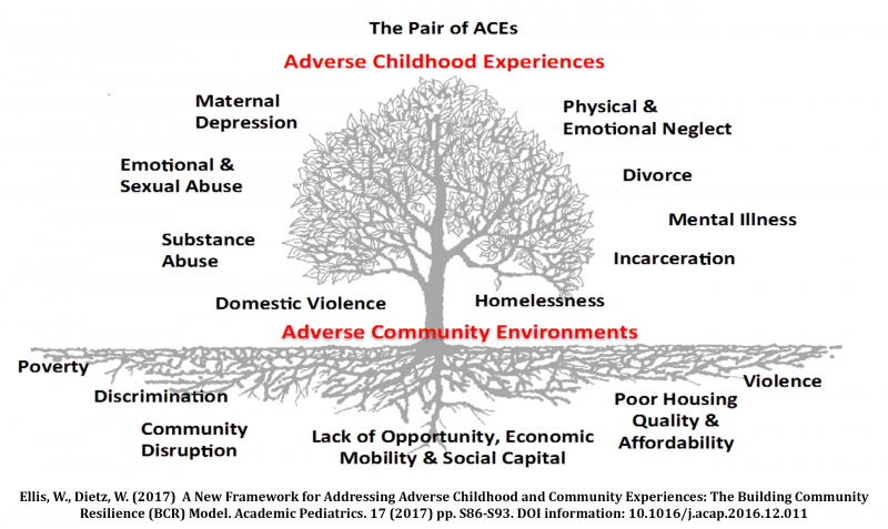 Pair of ACEs Tree